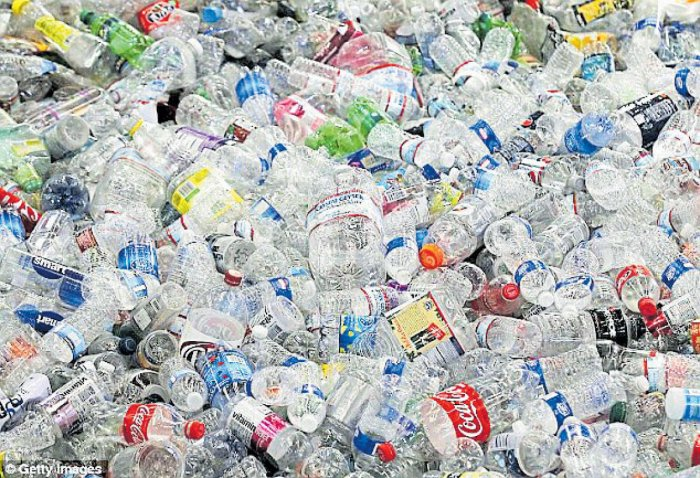A new scheme aimed at combatting garbage and pollution allows people to exchange recyclable plastic bottles for money to buy bus tickets. (Image for representation)