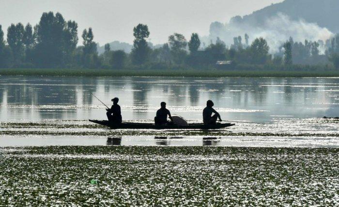 Men fish in the Dal Lake in Srinagar. (AFP Photo)