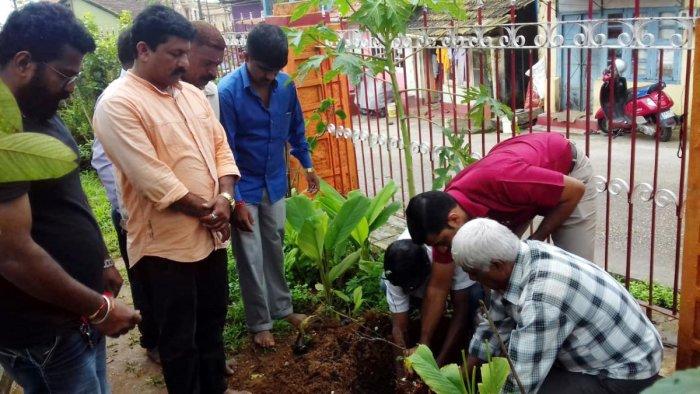 Members of Dasara Dashamantapa Samithi plant banni saplings near Banni Mantapa in Madikeri on Saturday.
