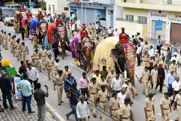 Dasara elephants march towards Mysuru Palace from Aranya Bhavan in Mysuru on Monday. (DH Photo)