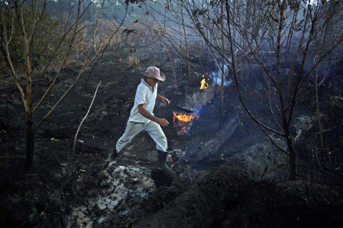 Brazilian farmer Helio Lombardo Do Santos is seen at a burnt area of the Amazon rainforest, near Porto Velho, Rondonia state, Brazil, on August 26, 2019. (Photo by CARL DE SOUZA / AFP)