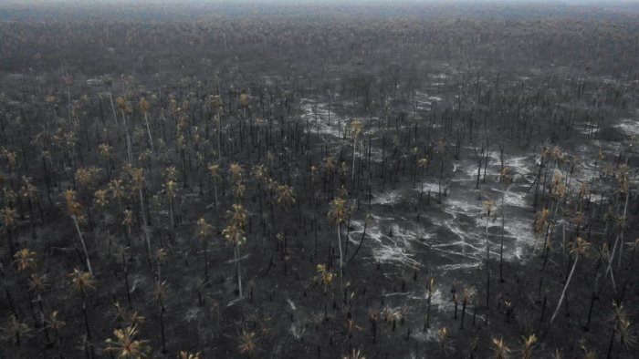 Aerial view of the damage caused by wildfires in Otuquis National Park, in the Pantanal ecoregion of southeastern Bolivia, on August 26, 2019. (Photo by Pablo COZZAGLIO / AFP)