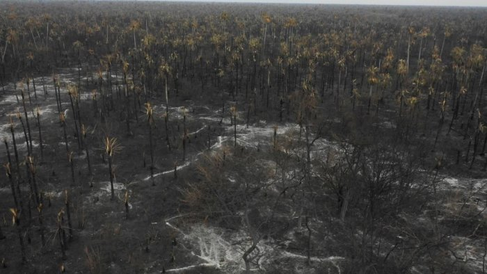 Aerial view of damage caused by wildfires in Otuquis National Park, in the Pantanal ecoregion of southeastern Bolivia, on August 26, 2019. AFP