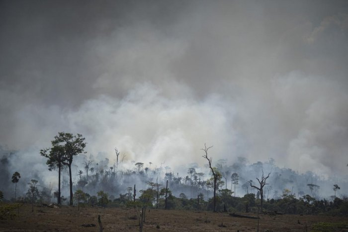 Fires across the Brazilian Amazon have sparked an international outcry for the preservation of the world's largest rainforest. AP/PTI