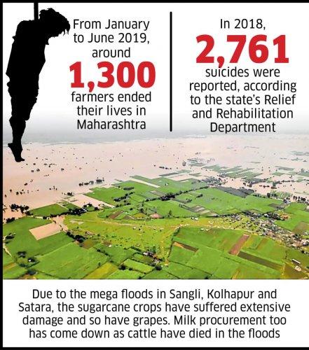 Farmer suicides in Maharashtra