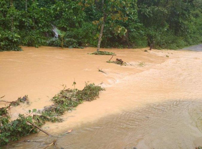 Rainwater overflowing from a coffee estate in Nadipura village in Mudigere taluk on Saturday.