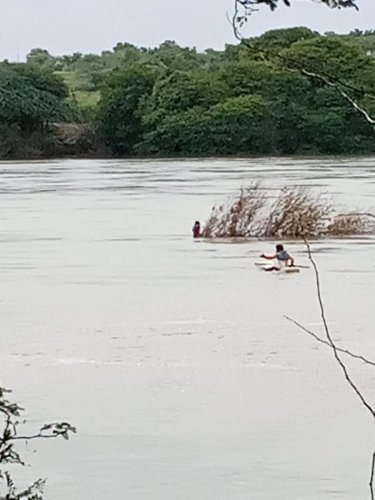 A fisherman on his way to rescue a woman in the swollen Bhima river in Mynal village in Kalaburagi district on Tuesday. DH PHOTO