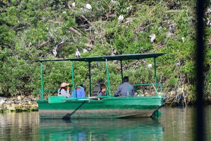 File picture of boating at the Ranganathittu Bird Sanctuary. DH Photo.