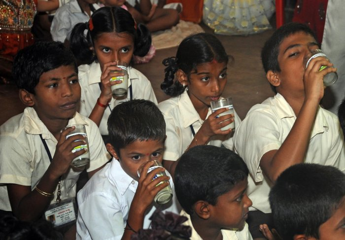 The nutritious powder will be mixed with milk provided to the kids twice a week under Ksheera Bhagya scheme. DH FILE