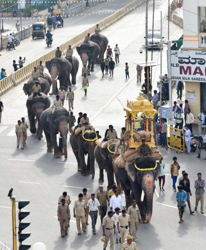 Dasara elephant Arjuna carries the wooden howdah as part of Jumboo Savari rehearsal in Mysuru on Thursday.