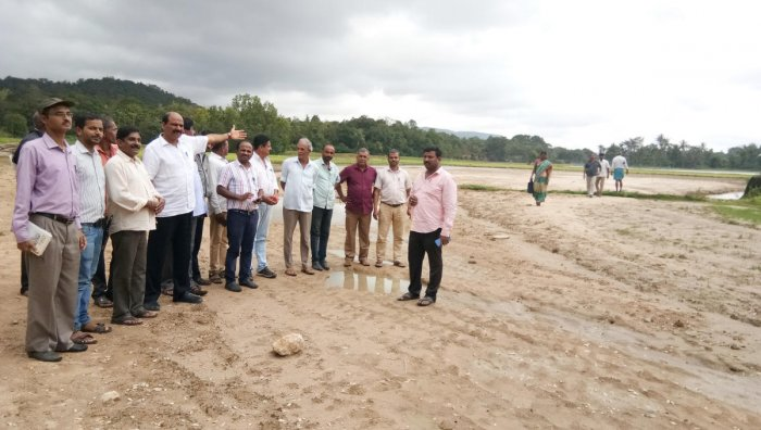 MLA T D Raje Gowda inspects the damaged paddy fields that have been completely damaged at Holegadde in Sringeri taluk.