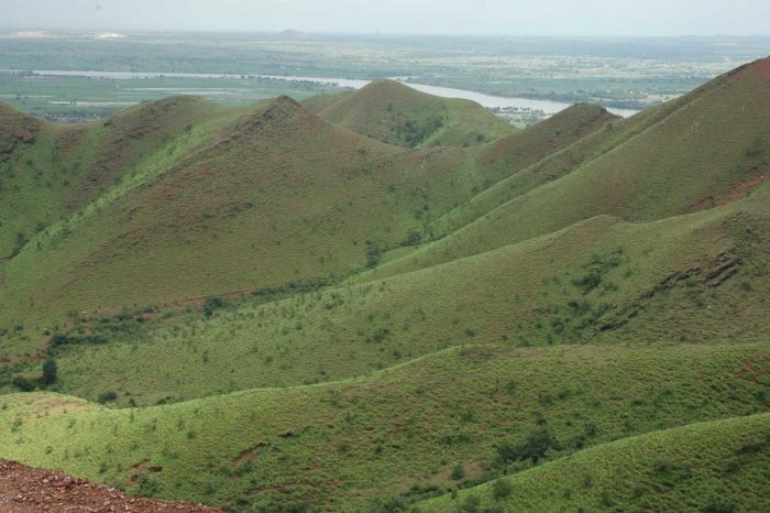 The lush green Kappatagudda Hills in Gadag district has rich reserves of iron ore and gold. DH File Photo