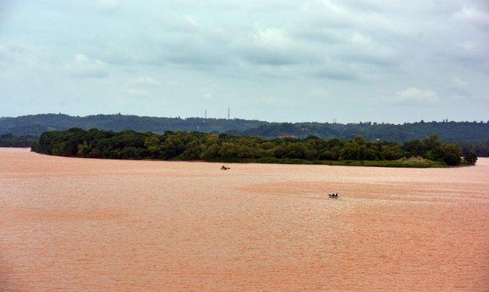 The island in River Nethravathi at Jeppinamogaru near Mangaluru city.