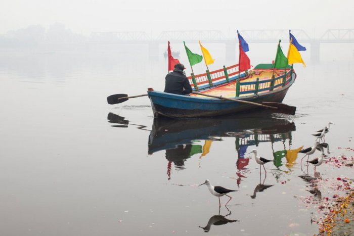 An Indian boatman rows his boat during a cold morning along the banks of the Yamuna River in Mathura in the Indian state of Uttar Pradesh. (Photo by AFP)