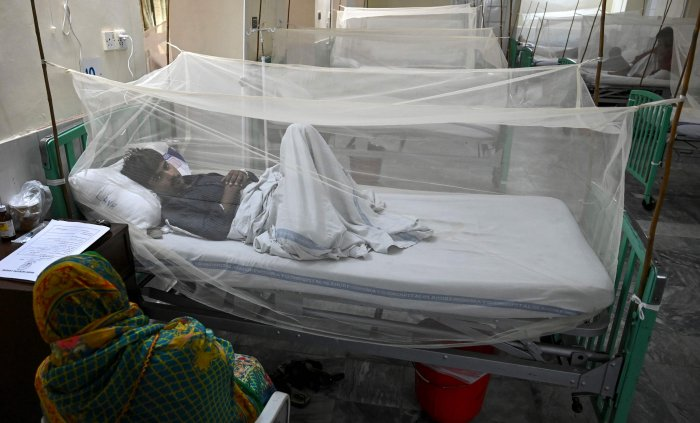 Patients suffering from dengue fever are treated as they rest on beds under nettings at a hospital in Lahore. (AFP Photo)