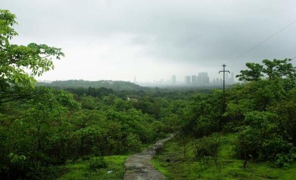 A view of the Aarey Colony in Mumbai. (DH Photo)