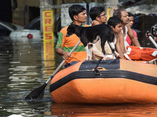 Torrential rain between September 27 and 30 has created a flood-like situation in 15 districts of Bihar, including the state capital. PTI photo