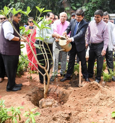 Arjun Menda, Chairman, Menda Foundation and Dr Ramachandra, Director Kidwai Institute of Oncology, are  plant a sapling in the premises of Kidwai Memorial Oncology Institute. Photo/ B H Shivakumar