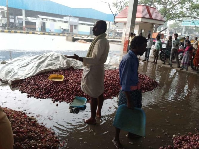 Heaps of onion bulbs were washed away in rainwater at APMC yard in Raichur on Friday. Plummeting prices owing to export ban and floods have left the growers in north Karnataka in the lurch. DH PHOTO