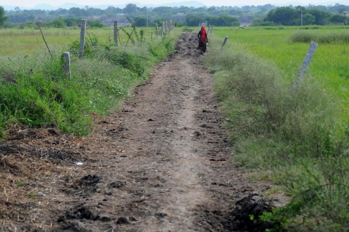 Open defecation is still prevalent in some villages of Yadgir district. DH Photo/Pushkar V