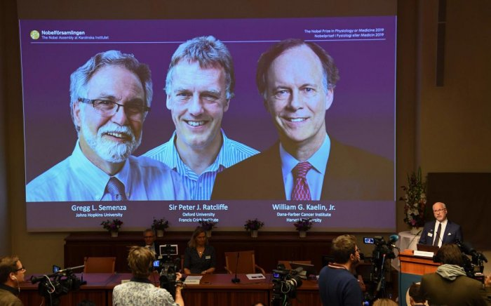 William Kaelin and Gregg Semenza of the US and Peter Ratcliffe of Britain win the 2019 Nobel Medicine Prize. (Photo by Jonathan NACKSTRAND / AFP)
