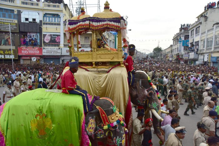 Dasara Elephant Arjuna carrying golden howdah during world famouse Jamboo Savari, at K R Circle in Mysuru (Photo by IRSHAD MAHAMMAD)