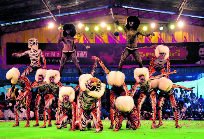Tiger dancers in action during 'Pili Nalike 2019' that was organised at the volleyball ground at Mannagudda, Mangaluru, on Monday.