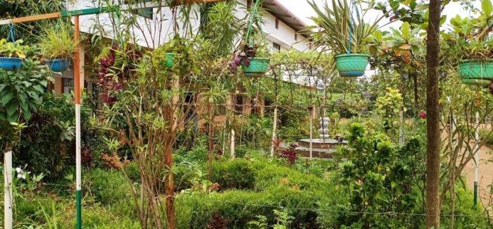 A hanging garden at Macchina Government High School at Ballamanja.
