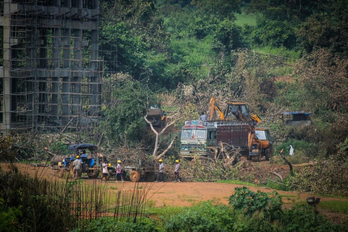 A tractor carries away the fallen trees for building a construction site of metro car parking shed at Aarey Colony. PTI