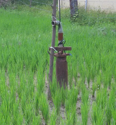 A borewell without power supply, at a paddy field.