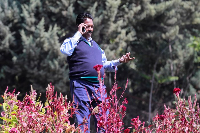 A man speaks on the phone after the partial restoration of mobile phone services in Srinagar October 14, 2019. (Photo by Reuters)