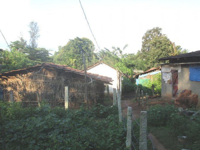 The houses in Bhovi Colony do not have toilets and residents are forced to defecate inthe open.