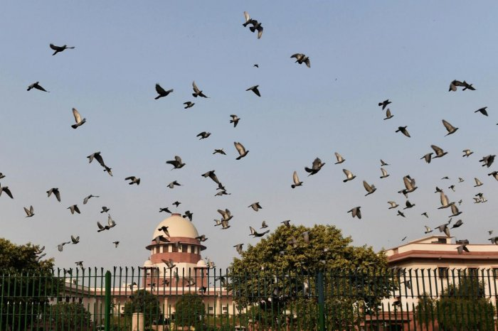 The Supreme court in New Delhi (PTI Photo)