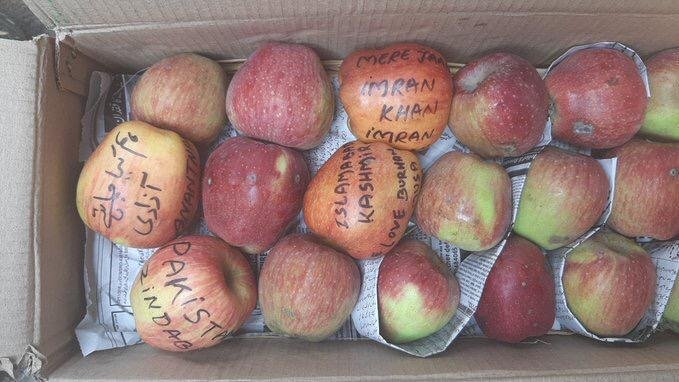 The fruit sellers on Wednesday threatened to boycott apples from Kashmir if the government fails to take action as people are refusing to purchase them due to these messages. Photo/Twitter