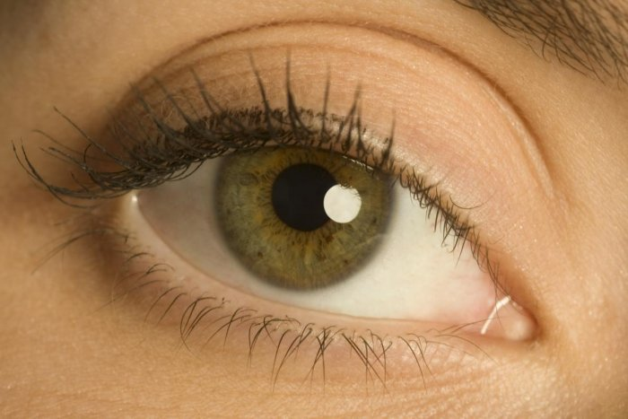 Health department officials and ophthalmologists in Bengaluru estimate that one lakh people with visual impairment await a transplant, at any given point in time, across the state.