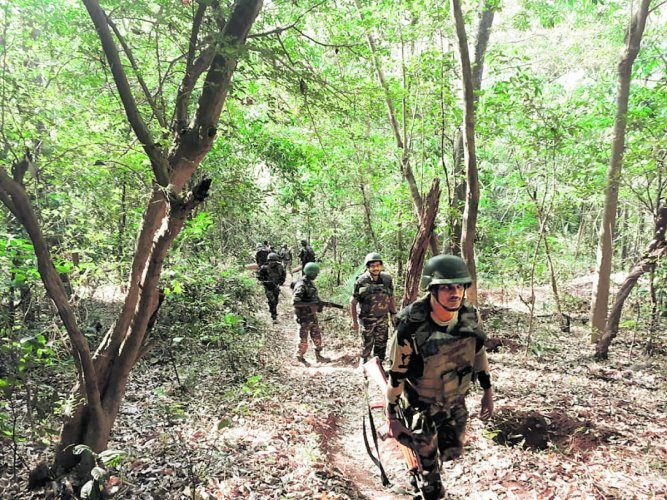 Anti-Naxal Force personnel carry out combing operations in forest region in border areas of Kodagu district on Saturday. DH photo