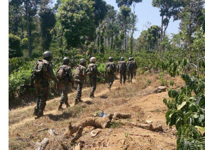 Combing operations were conducted in Brahmagiri in Kodagu last week.