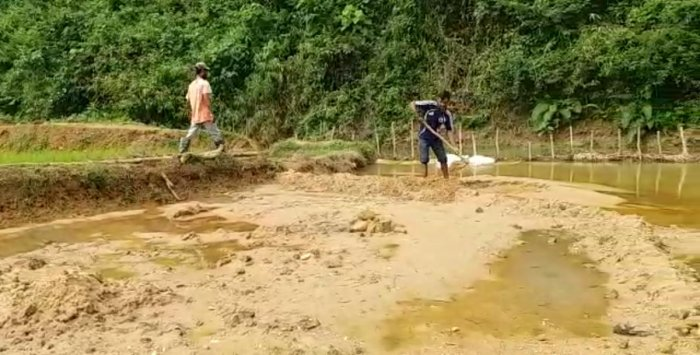 Workers clear the mud accumulated in a paddy field in Kodagu.