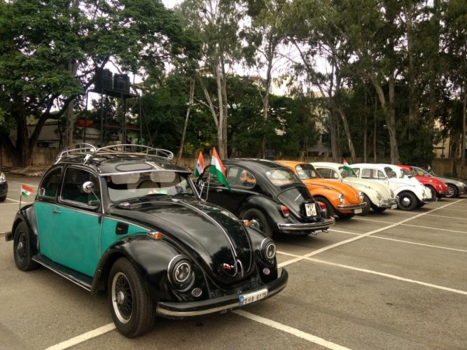 A fleet of Beetle cars parked at the Bowring Institute parking lot.