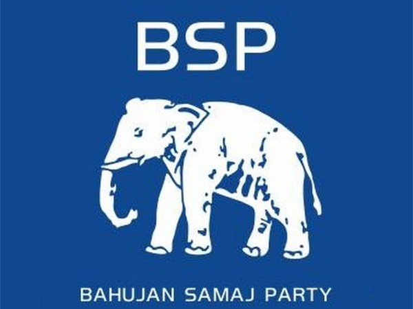 The workers were angry with Mane as he declared support to NCP candidate Ajit Pawar despite being in the fray himself as the BSP candidate, the police said.