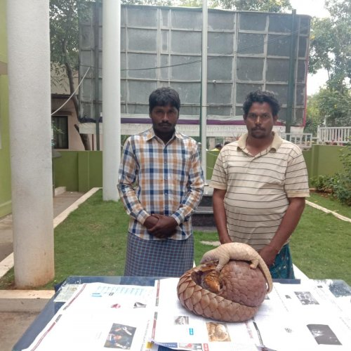 and Madhusudhan with the pangolins which they were allegedly trying to sell in the city.