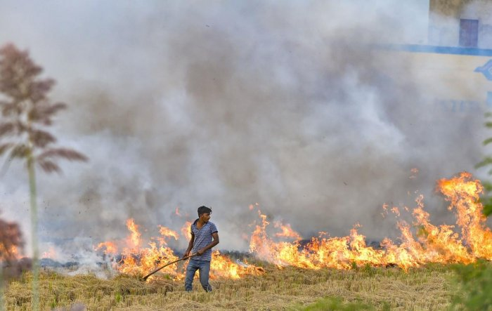 Stubble burning is considered as one of the major contributing factors for increasing air pollution and smoky haze in New Delhi (PTI Photo)