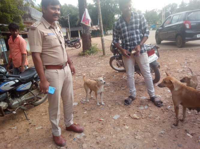 Bhadravathi Police said they found the dog (pcitured centre) and said that it's condition is good. (Photo Courtesy Police)