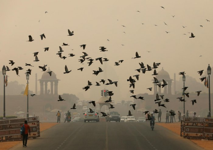 Birds fly as people commute near India's Presidential Palace on a smoggy day in New Delhi (Photo by Reuters)