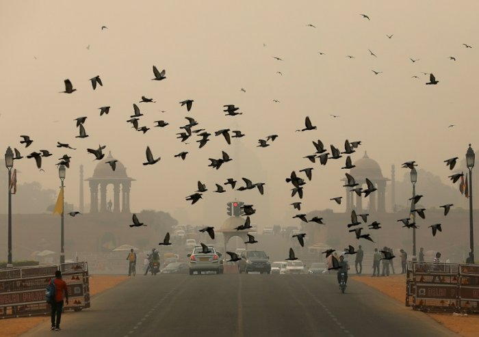 Birds fly as people commute near India's Presidential Palace on a smoggy day in New Delhi. (Reuters Photo)
