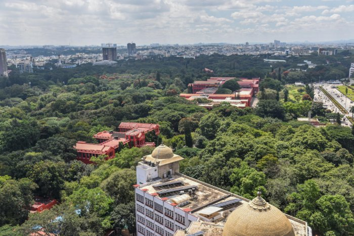 Top view of Sri Chamarajendra Park (Cubbon Park) in Bengaluru. Photo by S K Dinesh
