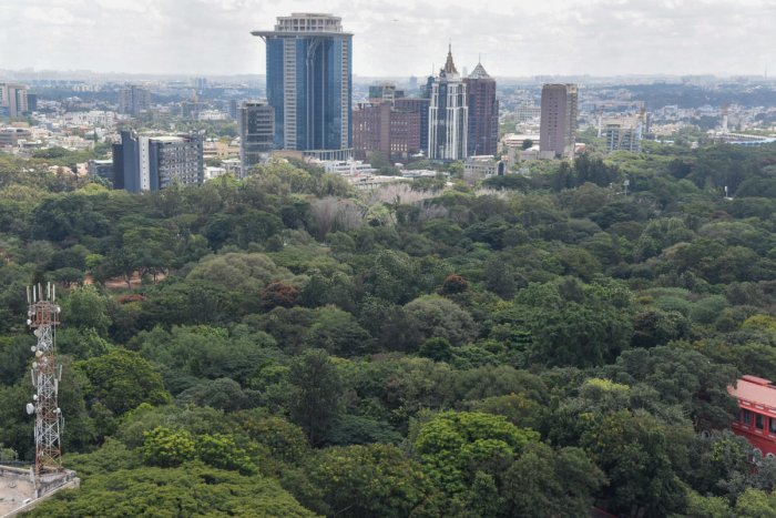 An aerial view of Cubbon Park in Bengaluru. DH Photo/Dinesh SK
