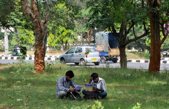A view of Bangalore University, Jnanabharathi campus, in Bangalore. Photo/ MSM