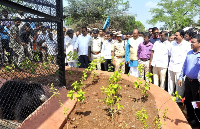 Forest Minister C C Patil, Bellary City MLA Somashekar Reddy, MP Y Devendrappa