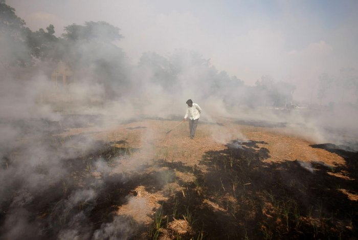 A farmer burns paddy waste stubble in a field on the outskirts of Ahmedabad, India, November 6, 2019. (REUTERS)
